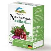 博能生機~蕁麻蔓越莓植物膠囊40顆/盒