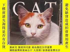 二手書博民逛書店Cat罕見Gallery 2014 (英語) 日曆 – Day