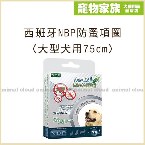 寵物家族-西班牙NBP防蚤項圈(大型犬用75cm)