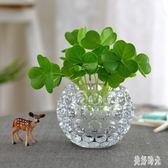 花瓶 玻璃水培瓶擺件銅錢草植物花盆綠蘿花瓶透明客廳插花水晶球OB2818『美好時光』