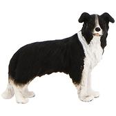 【永曄】collectA 柯雷塔A-英國高擬真動物模型-陸地動物系列-邊境牧羊犬 R88010