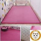 地毯臥室茶幾地毯臥室可愛臥室床邊毯榻榻米地墊地毯【小獅子】