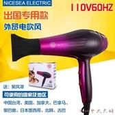 110V電吹風出口出國專用個人護理頭髮電風筒60HZ恒風110伏電風筒LXY4375【Rose中大尺碼】