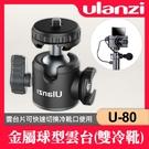 【現貨】Ulanzi U-80 金屬 全景 球形 雲台 迷你 雙冷靴 棚拍 攝影 U-60 進化版 (載重 10Kg)