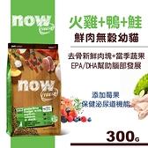 【SofyDOG】Now! 鮮肉無穀天然糧 幼貓配方 (300克)