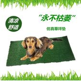 寵物狗狗廁所配套換洗草坪狗墊大小便分離塑料假草皮尿墊 igo