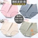 5條 純棉大碼內褲塑身三角褲【橘社小鎮】