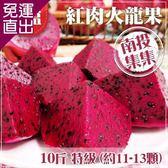 預購-家購網嚴選 集集農會 特級紅肉火龍果10斤裝x2盒 (約11-13顆/盒)【免運直出】