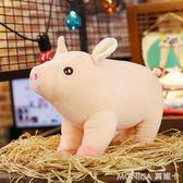 豬公仔毛絨玩具豬豬抱枕玩偶可愛女孩睡覺抱著布娃娃懶人 莫妮卡小屋 IGO