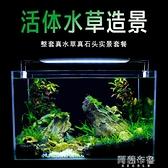 魚缸 真水草魚缸水族箱小型客廳辦公室桌面家用生態草缸裝飾布造景套餐 MKS阿薩布魯