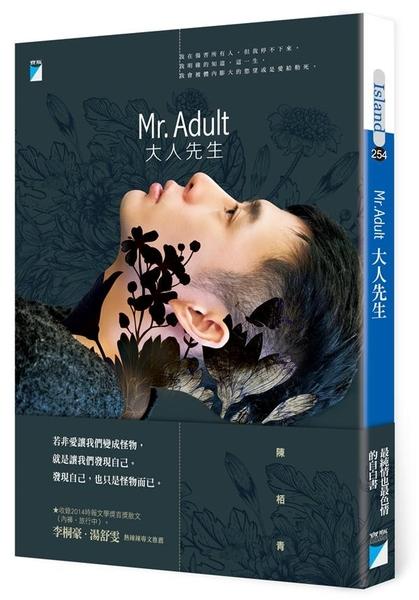 (二手書)Mr. Adult 大人先生