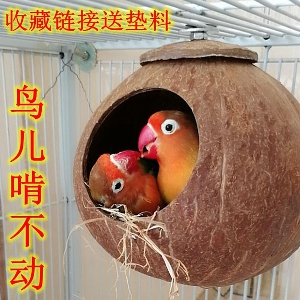 鳥窩牡丹虎皮珍珠文鳥窩椰子殼窩鸚鵡窩保暖椰殼鳥窩鸚鵡窩大小創意 一木良品 一木良品