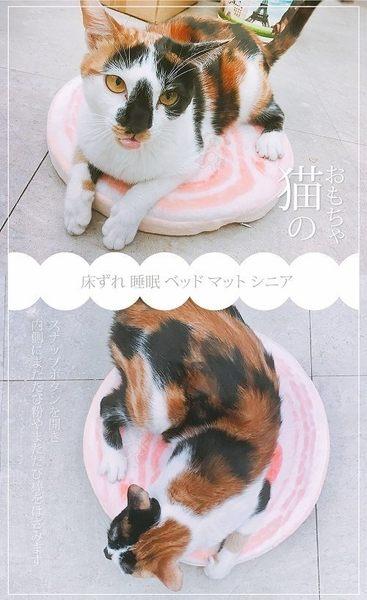 *KING WANG*【2入199含運組】2017新款!寵喵樂 仿真豬五花肉片 造型睡墊/睡床 犬貓可用 兩面可用