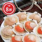 大扇貝 每包325克 -江爸爸漁舖