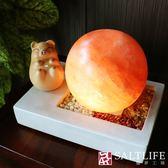 【鹽夢工場】清水模系列-五行玫瑰圓球鹽燈 (招財豬)