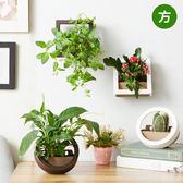 多肉植物 植栽 室內盆栽 創意DIY迷你牆上盆栽 壁貼 方形【SV7450】HappyLife