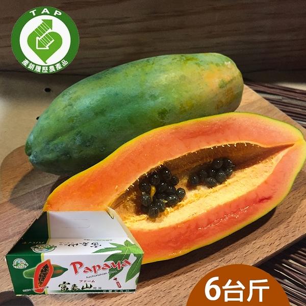 【履歷達人】日陞木瓜6台斤含運組(富春山農場)
