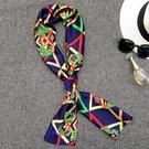 韓國小絲巾女士百搭長條圍巾職業絲巾細窄小領巾紗巾裝飾 黛尼時尚精品