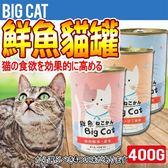 【培菓平價寵物網】BigCAT鮮魚》大貓綜合營養罐400g (4種口味)