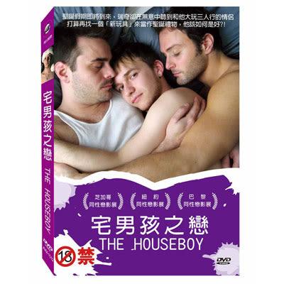 宅男孩之戀DVD