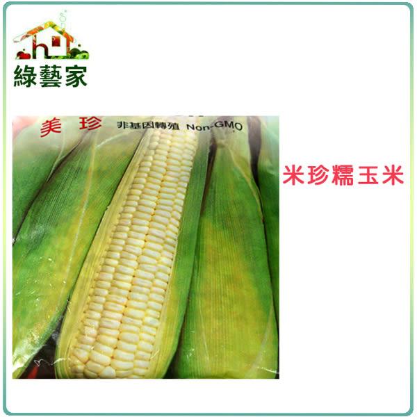 【綠藝家】G05.糯玉米(美珍)種子20顆