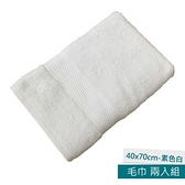 葡萄牙進口毛巾40x70cm 素色白 兩入組