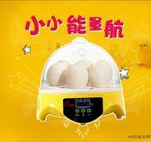 7枚小雞鴨鵪鶉孵蛋器 HHD孵化器 自動控溫小型家用迷你款沖冠wy