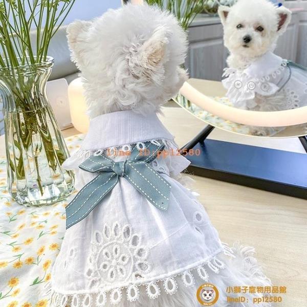 寵物貓咪泰迪比熊博美狗狗公主裙子春夏裝夏季薄款衣服小型犬小狗狗【小獅子】