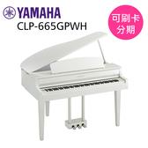 小叮噹的店 - YAMAHA CLP-665GPWH 88鍵 Clavinova系列 數位鋼琴 電鋼琴 平台式 光澤白色