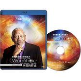 Blu-ray  摩根費里曼之穿越蟲洞:永恆的終止BD