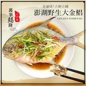 【大口市集】野生超大金鯧魚2尾(約750g/隻)
