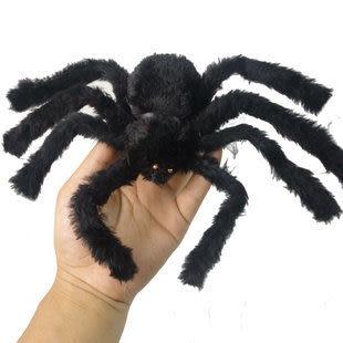 小號毛絨蜘蛛靜態 多色17g二個價