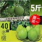 ★預購8/20-8/27出貨★買一送一【...
