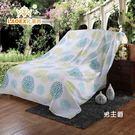 大蓋布防塵布 家具防塵布 防塵床罩沙發遮...