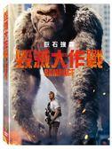 【停看聽音響唱片】【DVD】毀滅大作戰