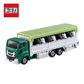 【日本正版】TOMICA NO.139 動物運輸車 家畜運輸車 玩具車 長車 長盒 多美小汽車 - 798323