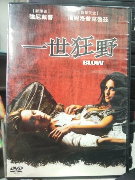 挖寶二手片-Z74-023-正版DVD-電影【一世狂野】-強尼戴普*我的母親-潘妮洛普克魯茲(直購價)經典片