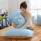 枕頭套A全棉B水晶絨枕套一對裝純棉單人加厚珊瑚絨法蘭絨枕頭罩冬季保暖【限時八折】