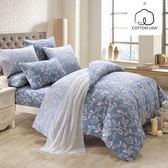 床包被套組 四件式雙人薄被套加大床包組/奧德曼藍/美國棉授權品牌[鴻宇]台灣製2013