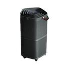 109/2/25前贈原廠濾網 Electrolux 伊萊克斯 高效空氣清淨機 PA91-606 黑色 / 灰色
