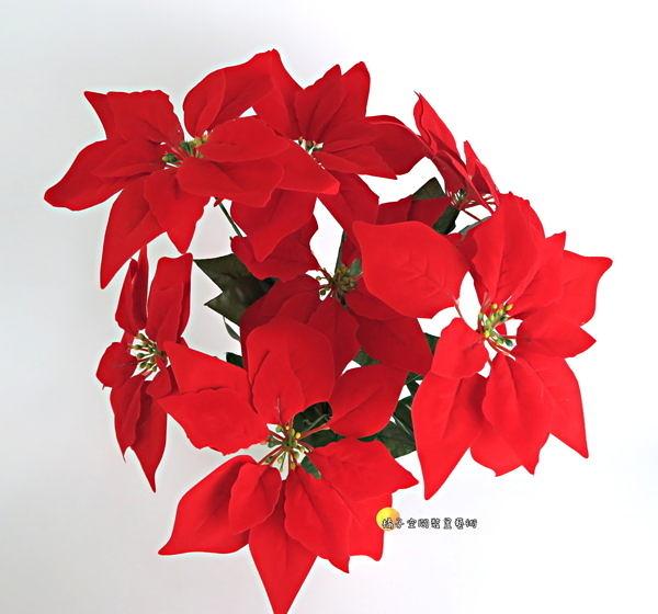 仿真7頭大聖誕紅盆栽 假聖誕紅 人造花☆插花.居家.店面.櫥窗擺飾.園藝☆
