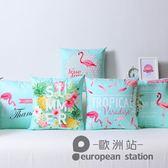 抱枕/火烈鳥靠墊臥室天鵝絨腰靠背枕沙發靠枕現代簡約含枕芯「歐洲站」