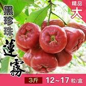 【家購網嚴選】 屏東枋寮黑珍珠蓮霧 3斤裝 (約12-17粒)/盒 精品大
