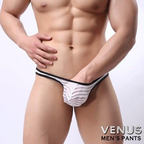 情趣用品-內褲 含滋潤液VENUS 低腰性感 透明 囊袋款 丁字褲 白色 T057 男性情趣內褲