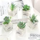 北歐仿真綠植物仙人掌多肉假花裝飾擺件客廳擺設辦公室桌面小盆栽