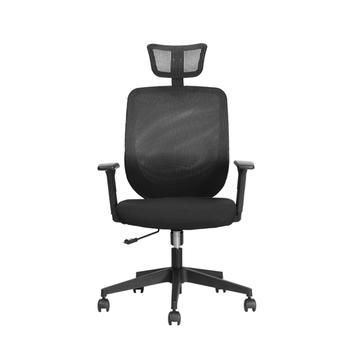 【BNS居家生活館】台灣製BACKBONE -Eagle入門工學椅辦公椅/辦公椅/椅子