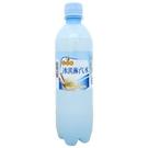 【免運/聯新貨運】金蜜蜂冰淇淋汽水500ml(24瓶/箱)【合迷雅好物超級商城】  _02