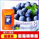 藍莓精華錠 B群添加☻ 視覺維持 健康補...
