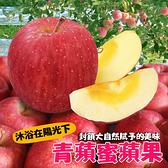 相馬村青森蜜蘋果270g/粒