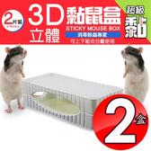 金德恩 台灣製造專利款 二盒3D超黏力捕鼠盒2片裝/盒/捕鼠器盒